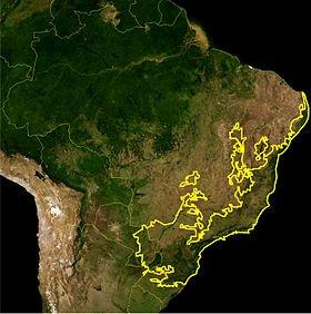 Atlantic_Forest_WWF.jpg.1d00d24089c9c856828ee62d22595693.jpg